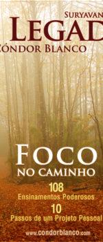 Foco-no-Caminho.jpg